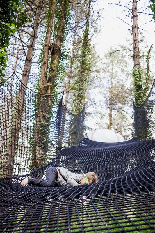 nid-bearn-logement-insolite-arbres©kindabreak