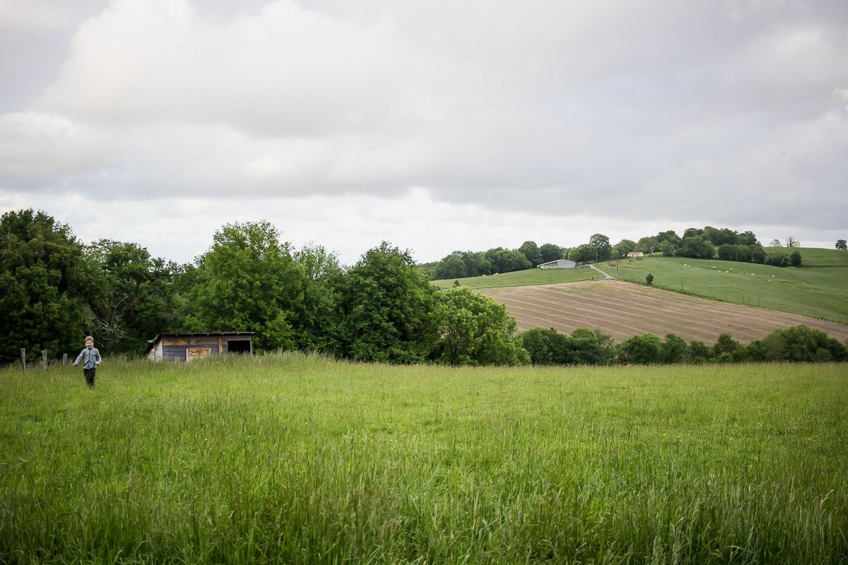 nid-bearn-logement-insolite-champs©kindabreak