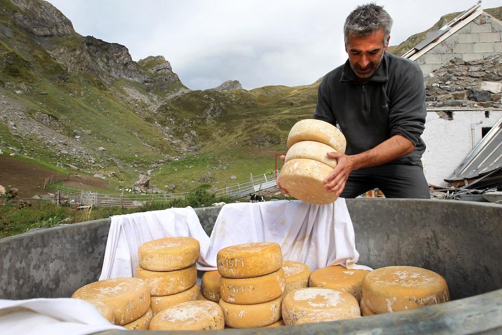 la descente des fromages des estives ‡ Bious Artigues